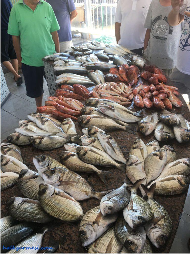 Balık mezatı